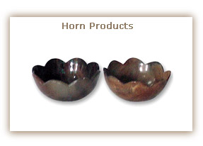 Horn Products